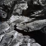 Landscape 33 by walter huber