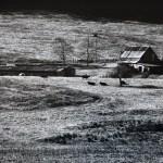 Landscape - Farm by walter huber