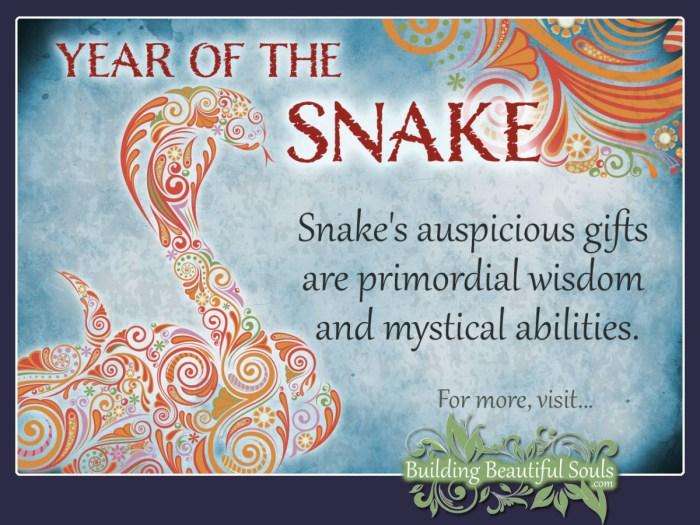 snake-jun-revs