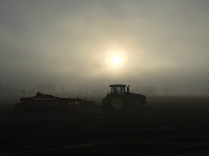 Harvest in the Fog