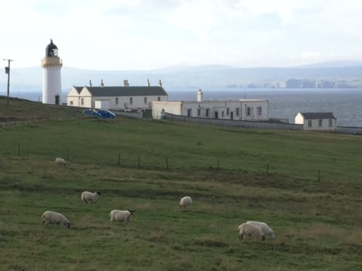 The Bressay light house, sheep in foreground