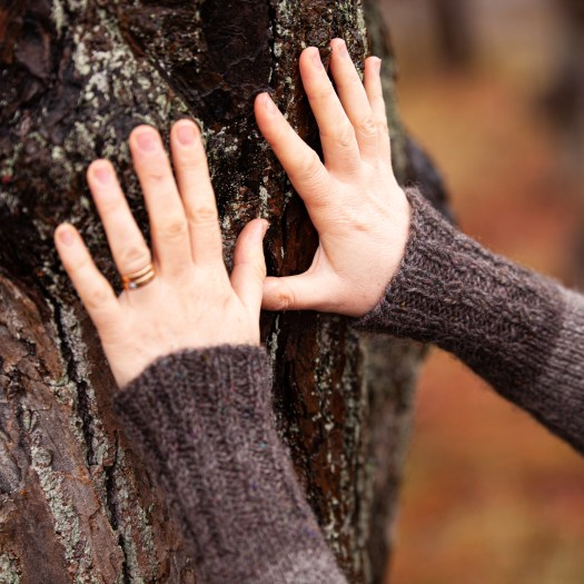 Two hands touching a tree. You can see the cuffs of a knitted sweater. The ribbing of the cuffs is cabled.
