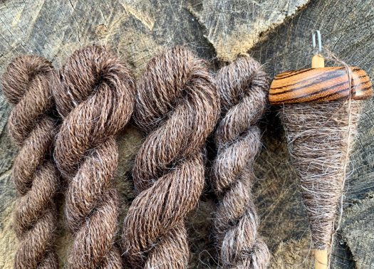 Four skeins of yarn in shades of brown and a spindle with brown yarn.