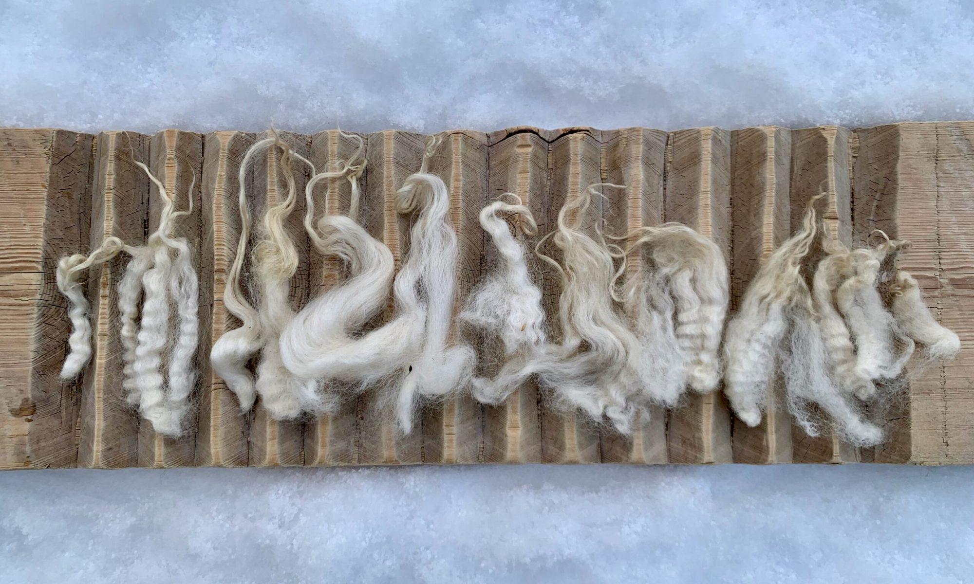 Pälsull, rya, vadmal and finull type wool frame one Värmland fleece.