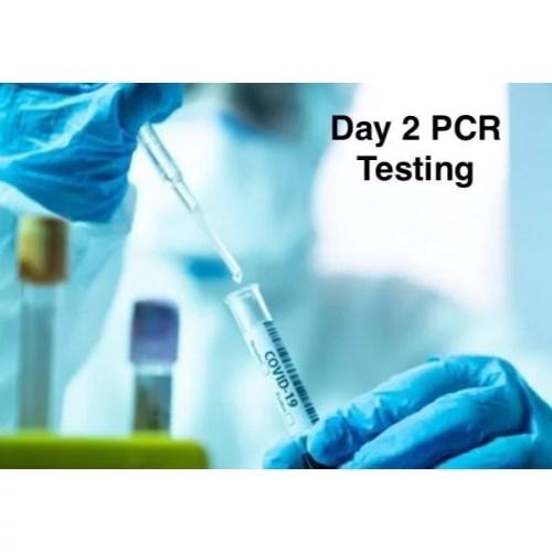 PCR day 2