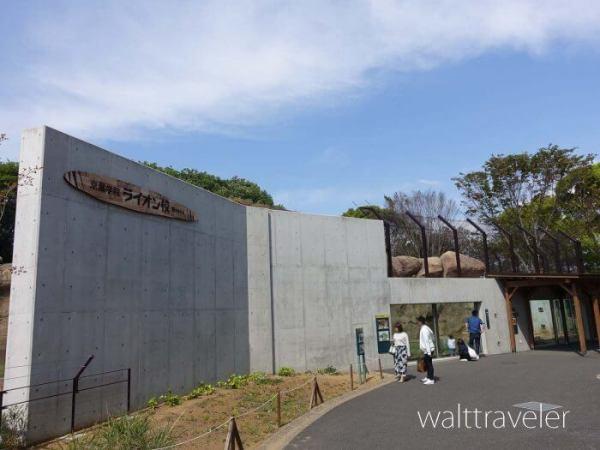 千葉市動物公園 京葉学院ライオン校