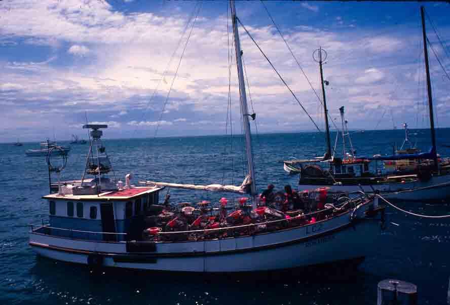 Cray boats, Kangaroo Island