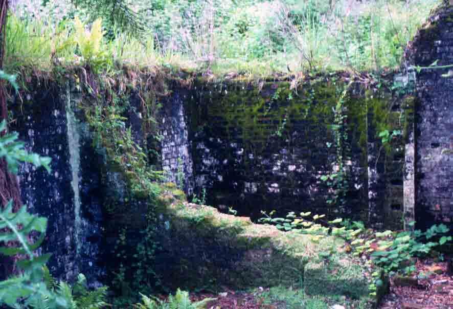 Ruins on Sarah Island