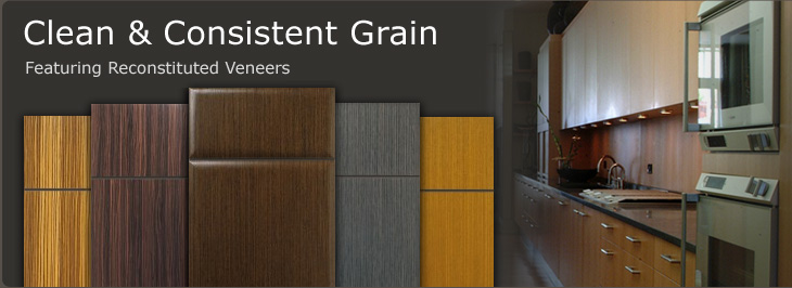 Contemporary Slab Cabinet Doors  WalzCraft