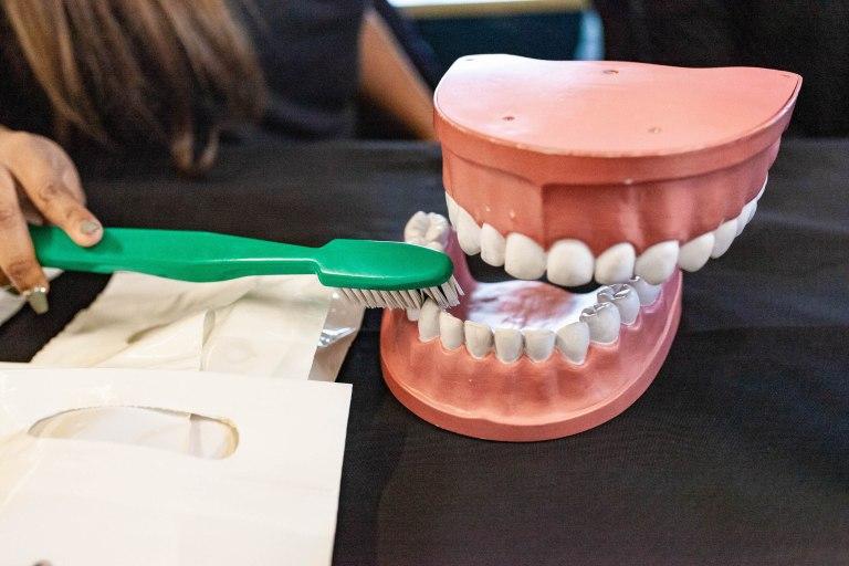 Maryland Healthy Smiles Dental Program 001 768x512
