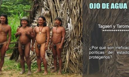 ¿Quiénes son los Tagaeri y Taromenane? Porqué resultan ineficaces las medidas del Estado ecuatoriano