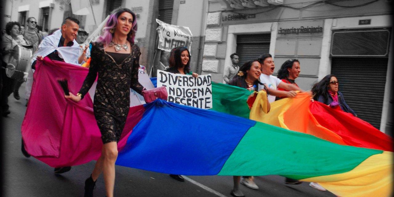 """""""Género en la Ley"""" gritamos las mujeres diversas"""