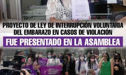 Proyecto de Ley de Interrupción Voluntaria del Embarazo en casos de Violación fue presentado en la Asamblea Nacional