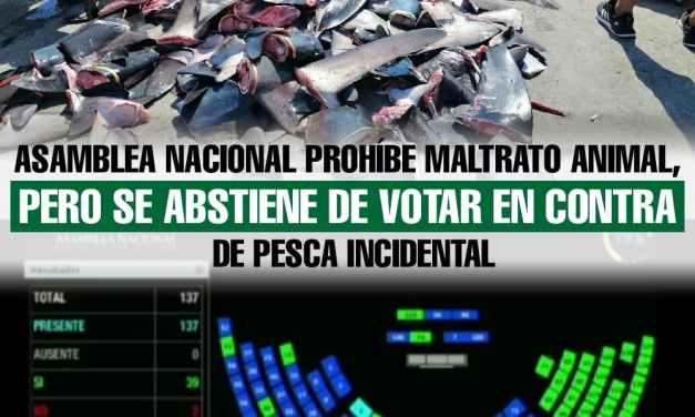Asamblea Nacional prohíbe maltrato animal, pero se abstiene de votar en contra de pesca incidental