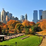 197 1970048 Central Park In Nyc During Autumn New York Scaled, WAM Partners