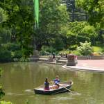 Centralpark Boating, WAM Partners