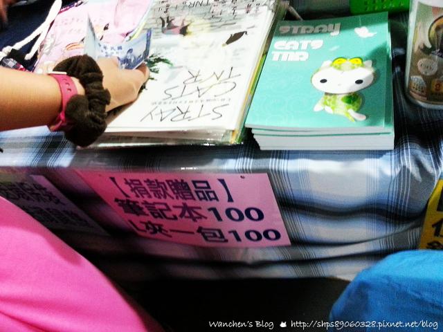 20140614華山貓咪送養_105828