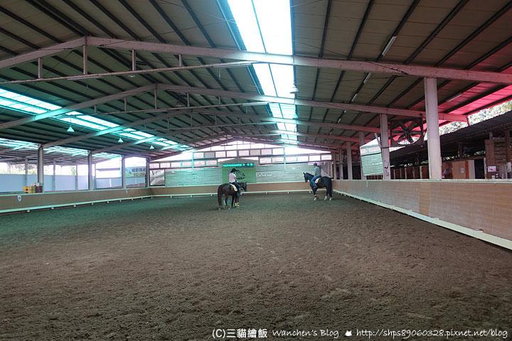 淡水騎馬 綠野馬場