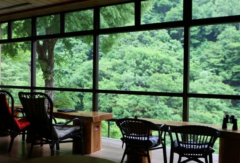 仙人露天岩浴池與溪谷美之宿 風景館