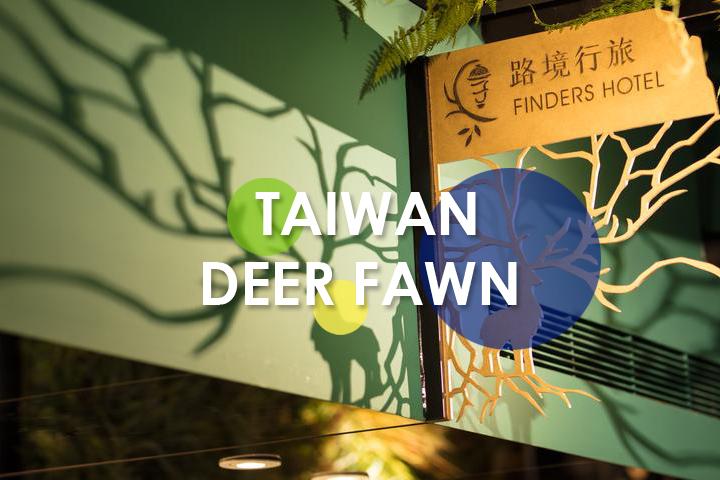 deer-fawn-group