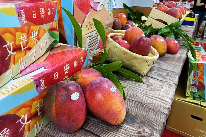 tainan-mango-gift-box-202007-03