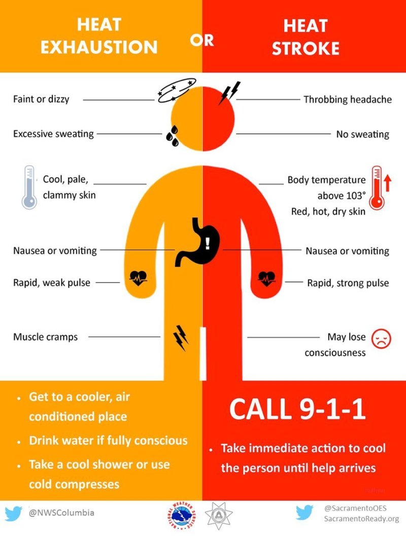 Know The Warning Signs Of Heat Stroke Vs Heat Exhaustion Wandtv Com Newscenter Stormcenter Central Illinois News