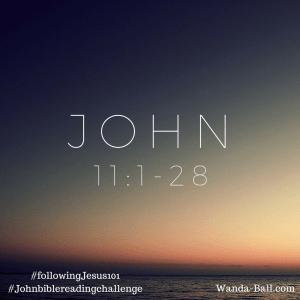 John 11-1-28