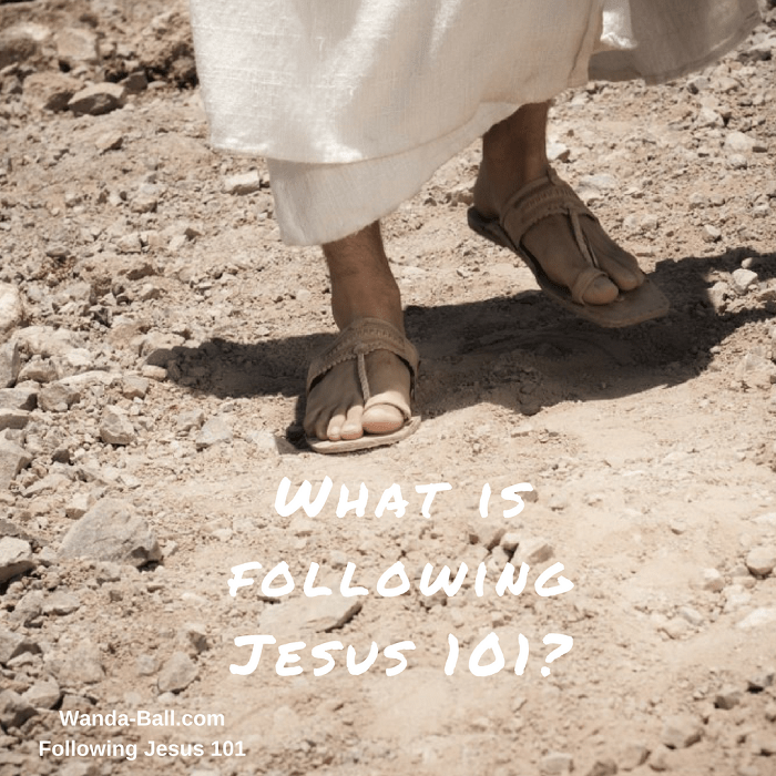 what-is-following-jesus-101