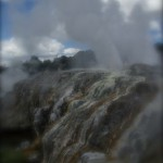 Geyser, Rotorua, New Zealand.