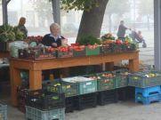 Chełmno market fare.