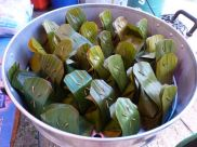 My fish curry in leaves lunch from the Nai Yang farmers market.