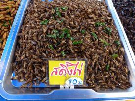 More bugs for sale at the Nai Yang market.