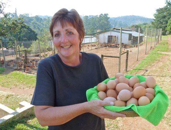 On Sunshine Eggs farm in KwaZulu-Natal.