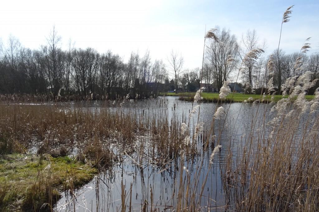 Compagniepad Veendam