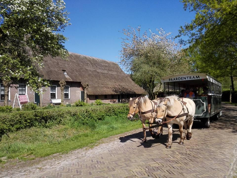 paardentram Orvelte