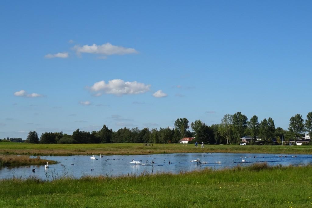 Wandelroute Leinwijk Kropswolde wandelen herfst