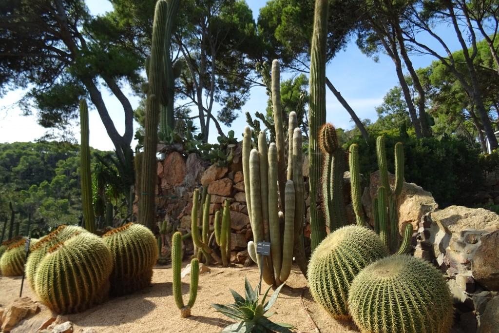 Botanische tuin Cap Roig Costa Brava Spanje