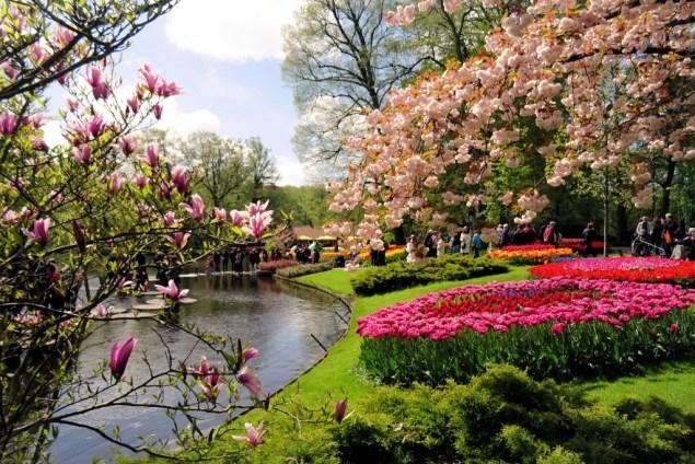 Keukenhof Lisse Nederland april tulpen