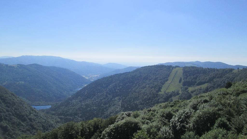 Camping Les Rives de la Doller Elzas Frankrijk
