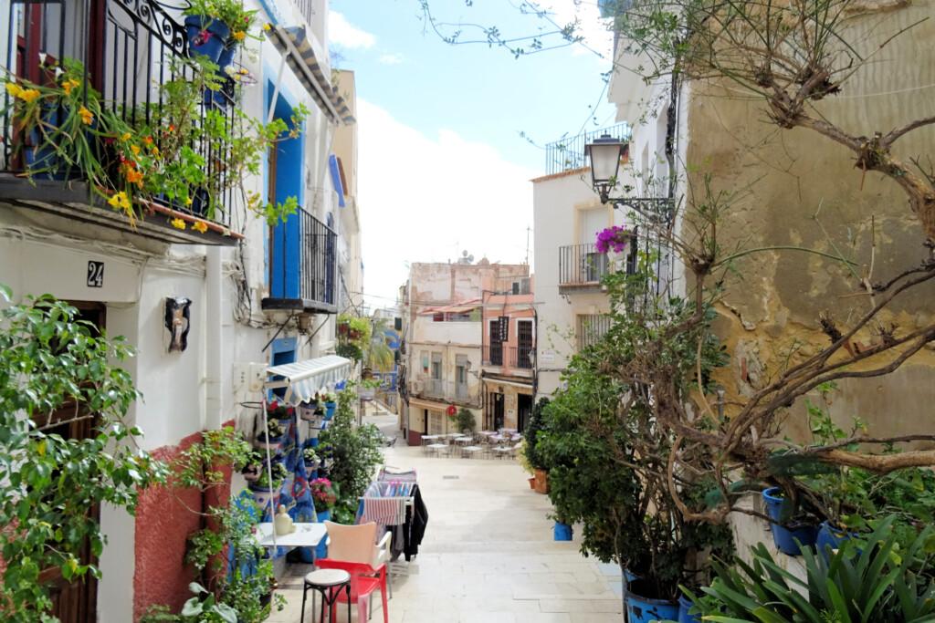 volkswijk El Barrio Alicante