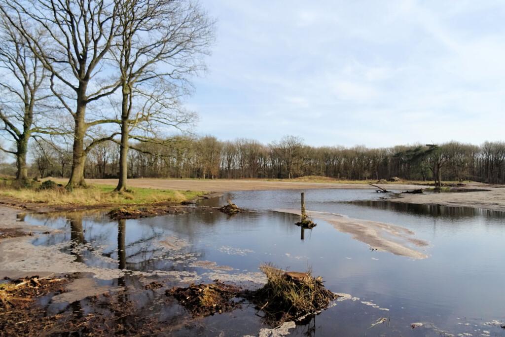 Vijftig Bunder Drenthe