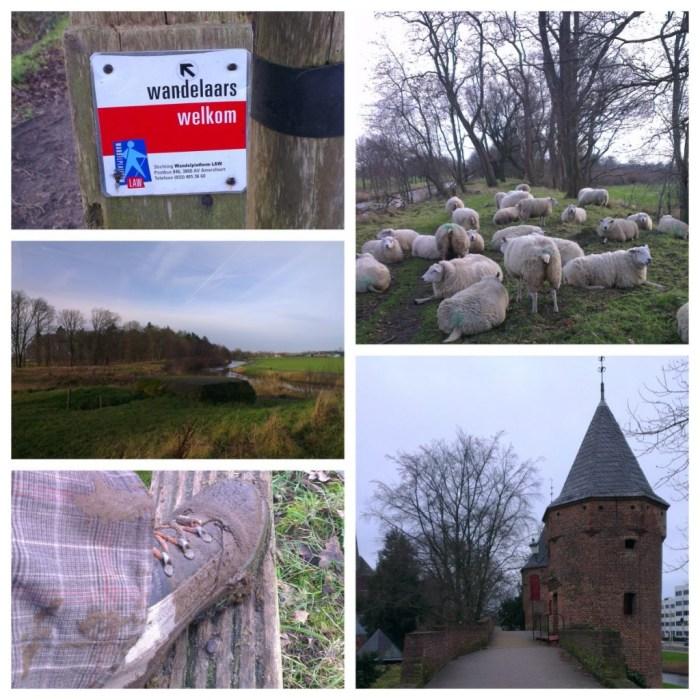 Utrechtpad Scherpenzeel - Amersfoort