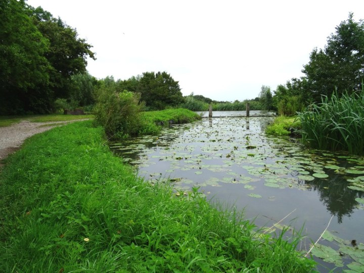 Uitloper Hollandse IJssel langs Klompenpad Eendenkooienpad