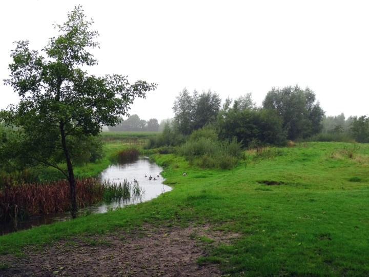 NS Wandeling Kampina - Beekje