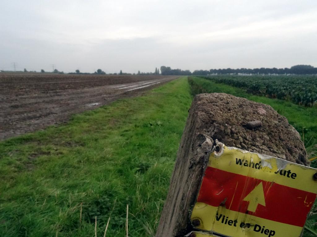 Mooiste wandeling Zuid-Holland - Vliet en Dieproute