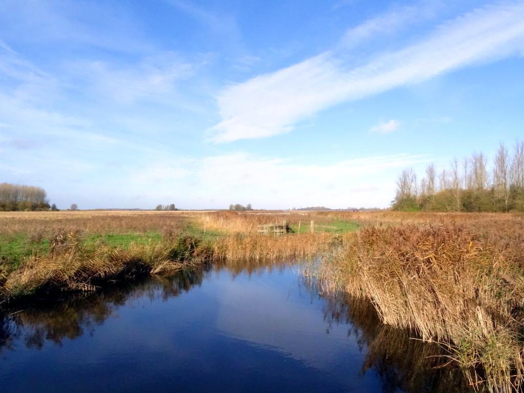 Wandelen Staatsbosbeheer Lauwersmeer