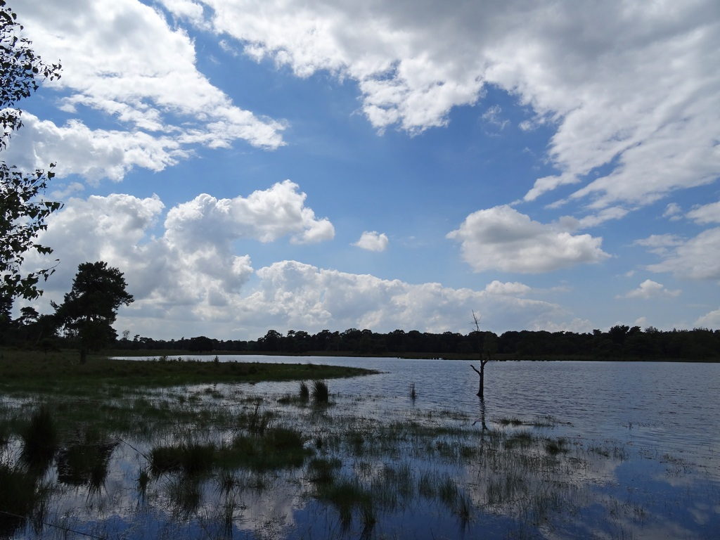 Wandelen In Noord Brabant Wanda Wandelt