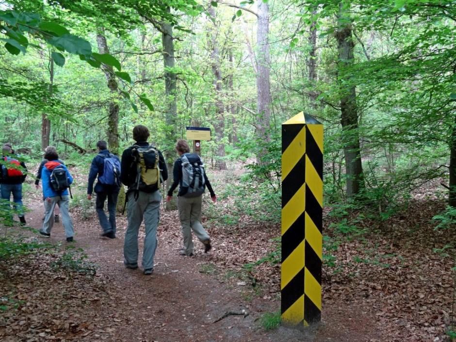 Wandeling in de bossen bij Wolfheze (15 km)