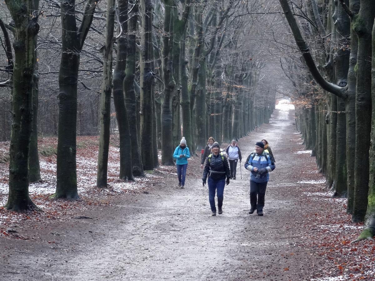 Samen wandelen rond Amerongen