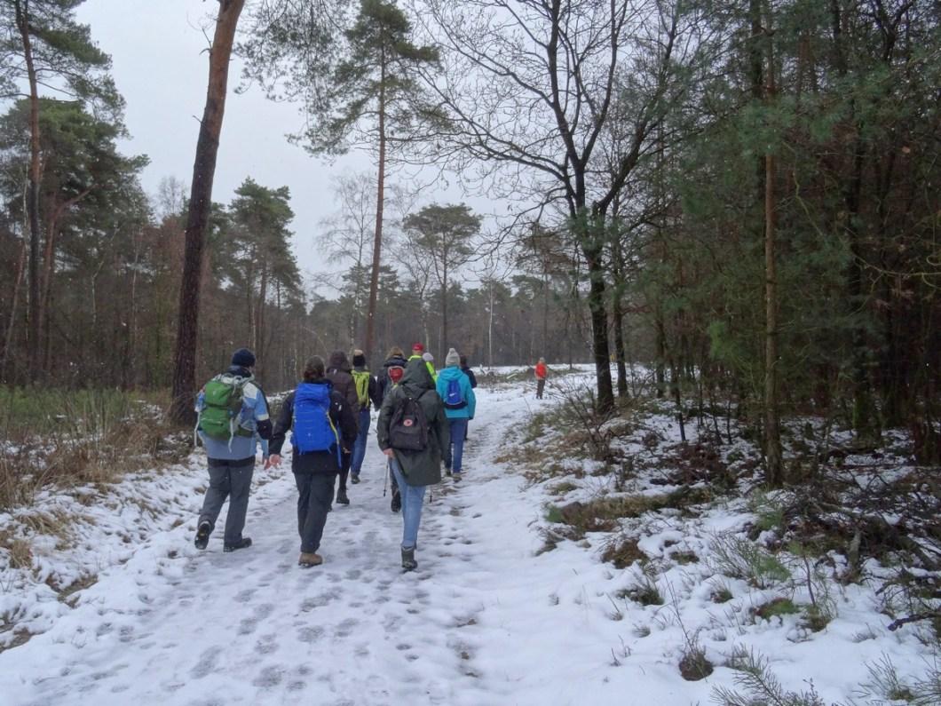Winterwandelen op de Utrechtse Heuvelrug